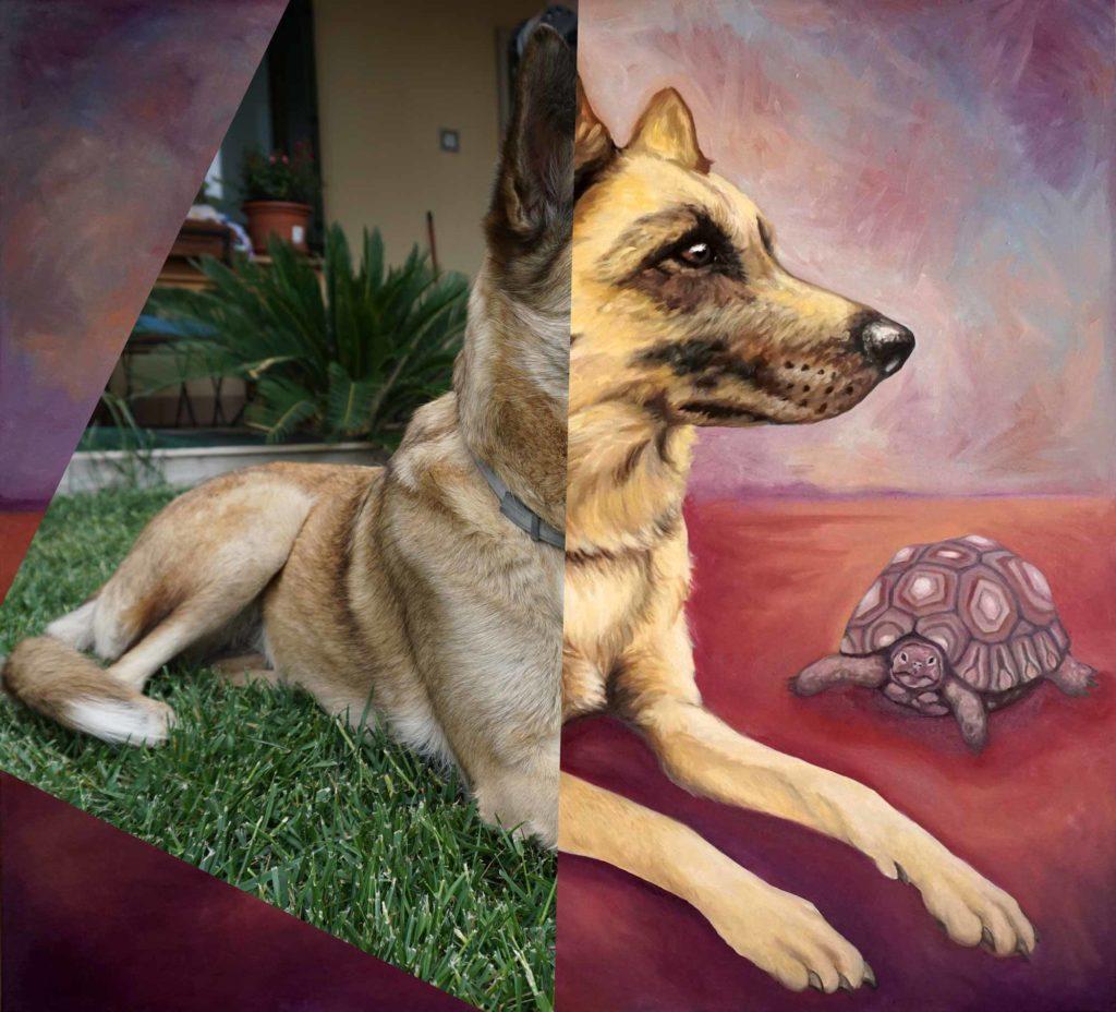 ritratti su commissione, ritratti di cani