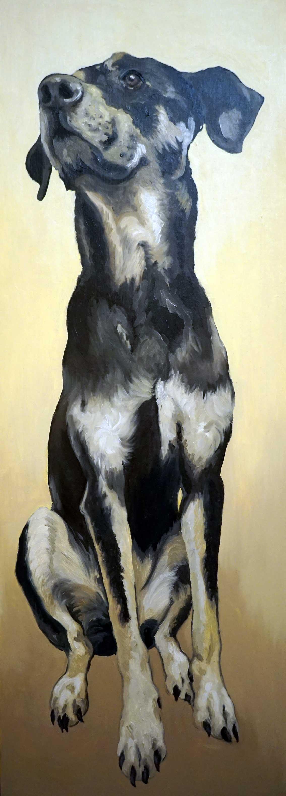 Ritratto Diana, ritratto cane