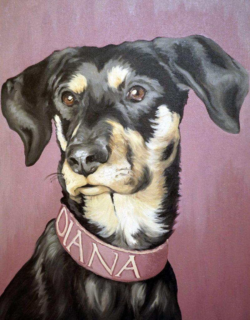 Muso cane